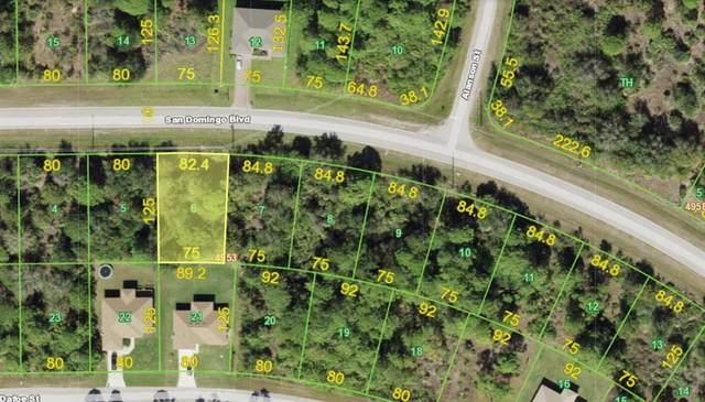 14379 San Domingo Boulevard, Port Charlotte, FL 33981 (MLS #A4499511) :: Premier Home Experts