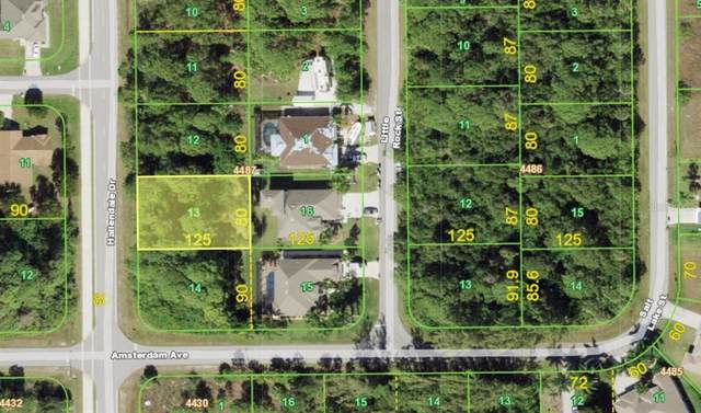 9596 Hallendale Drive, Port Charlotte, FL 33981 (MLS #A4499512) :: Rabell Realty Group