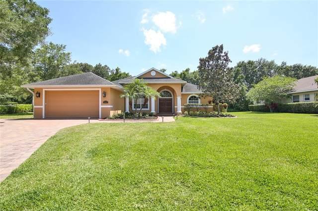 15410 21ST Avenue E, Bradenton, FL 34212 (MLS #A4499616) :: MavRealty