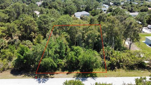 12107 Brookside Ave, Port Charlotte, FL 33981 (MLS #A4499620) :: Rabell Realty Group