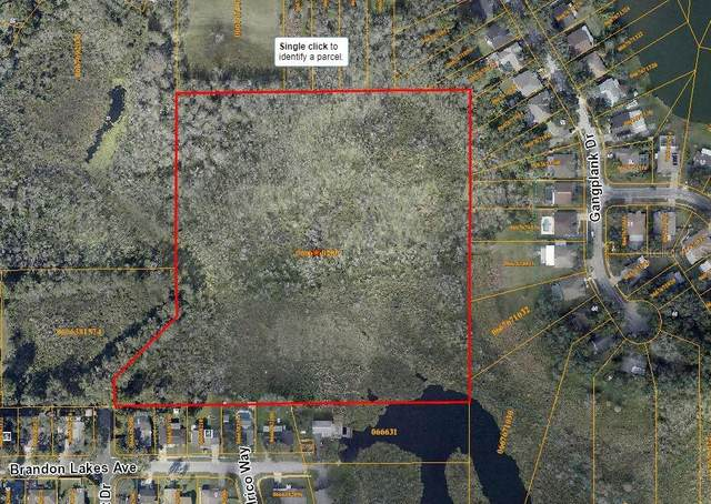0 Meadowcrest Drive, Valrico, FL 33594 (MLS #A4499675) :: The Robertson Real Estate Group