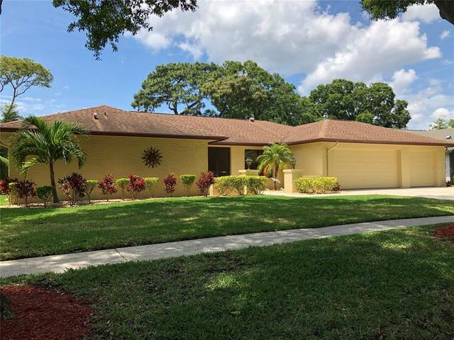 3150 Hyde Park Drive, Clearwater, FL 33761 (MLS #A4499778) :: Heckler Realty