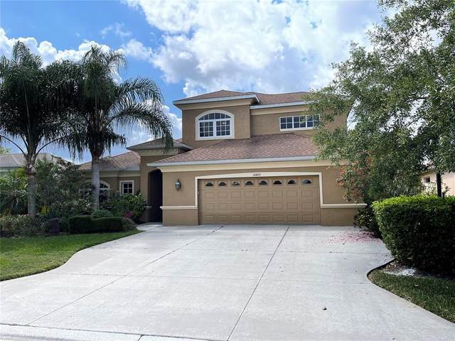 12420 Aster Avenue, Bradenton, FL 34212 (MLS #A4499786) :: The Paxton Group