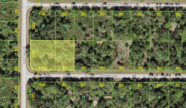 14422 Grothaus Avenue, Port Charlotte, FL 33953 (MLS #A4499836) :: CGY Realty