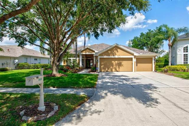 18109 Sugar Brooke Drive, Tampa, FL 33647 (MLS #A4499906) :: Realty One Group Skyline / The Rose Team