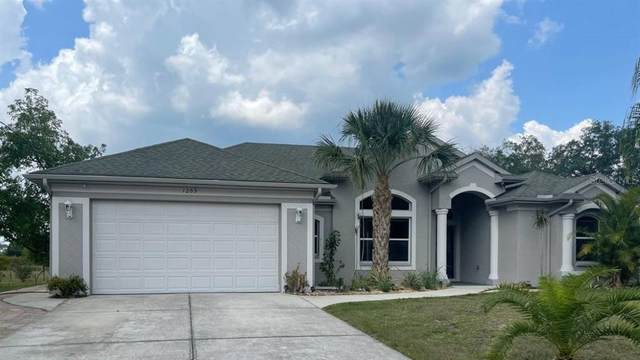 1269 Tripoli Street, North Port, FL 34286 (MLS #A4500024) :: Realty One Group Skyline / The Rose Team