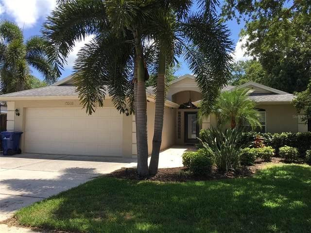 7248 Java Drive, Sarasota, FL 34241 (MLS #A4500152) :: Expert Advisors Group
