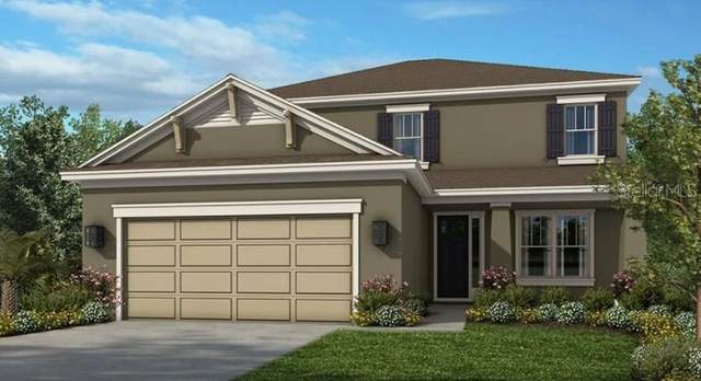 34199 Astoria Circle, Wesley Chapel, FL 33545 (MLS #A4500158) :: Rabell Realty Group