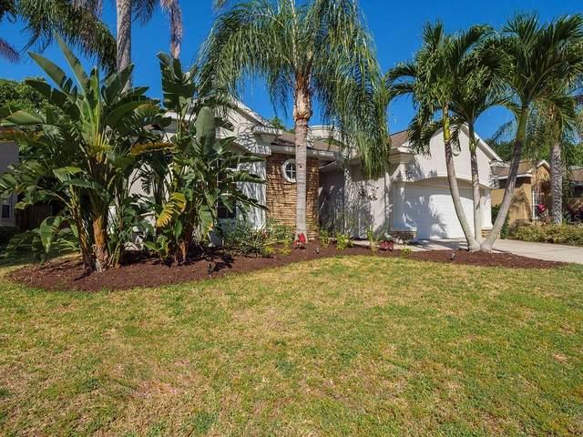 310 36TH Street NE, Bradenton, FL 34208 (MLS #A4500228) :: EXIT King Realty