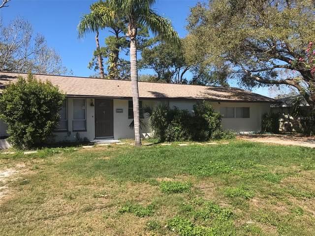 6050 Carlton Avenue, Sarasota, FL 34231 (MLS #A4500315) :: Expert Advisors Group