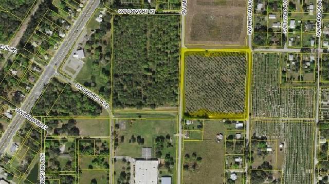 4640 SW Welles Avenue, Arcadia, FL 34266 (MLS #A4500340) :: Zarghami Group