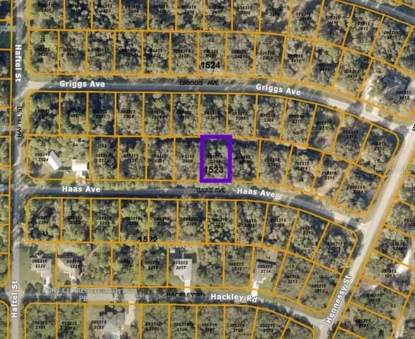 Haas Avenue, North Port, FL 34291 (MLS #A4500350) :: MVP Realty