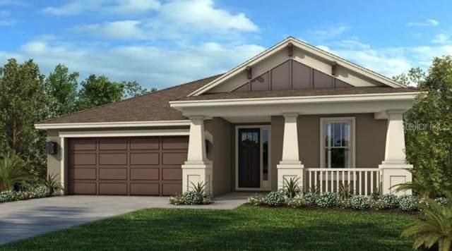 34209 Astoria Circle, Wesley Chapel, FL 33545 (MLS #A4500405) :: SunCoast Home Experts