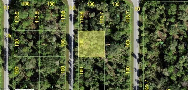 1140 Delmore Street, Port Charlotte, FL 33953 (MLS #A4500422) :: CGY Realty