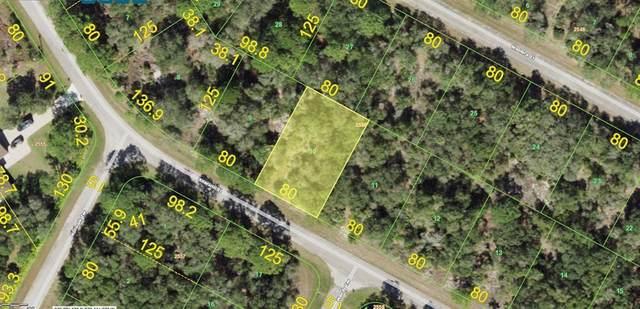 1234 Sherwin Street, Port Charlotte, FL 33953 (MLS #A4500432) :: Southern Associates Realty LLC