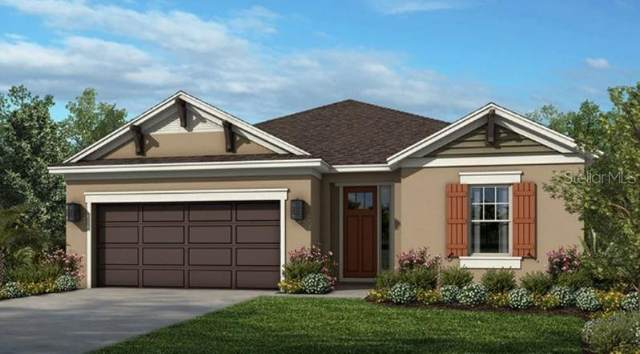 34191 Astoria Circle, Wesley Chapel, FL 33545 (MLS #A4500467) :: The Hustle and Heart Group
