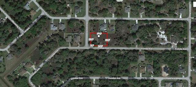 Fronda Avenue, North Port, FL 34291 (MLS #A4500474) :: The Price Group