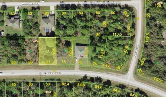 14370 San Domingo Boulevard, Port Charlotte, FL 33981 (MLS #A4500505) :: Armel Real Estate