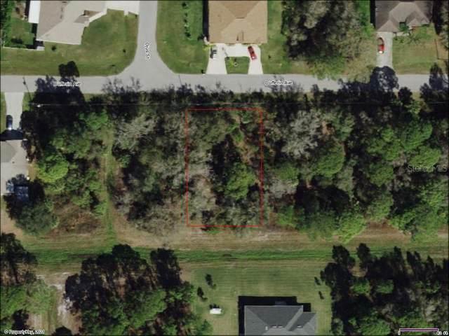 26 Dufferin Avenue, North Port, FL 34286 (MLS #A4500534) :: Premier Home Experts