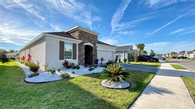 12577 Ryegrass Loop, Parrish, FL 34219 (MLS #A4500541) :: Frankenstein Home Team