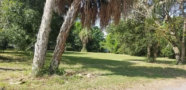 1917 3RD Avenue E, Palmetto, FL 34221 (MLS #A4500574) :: Medway Realty