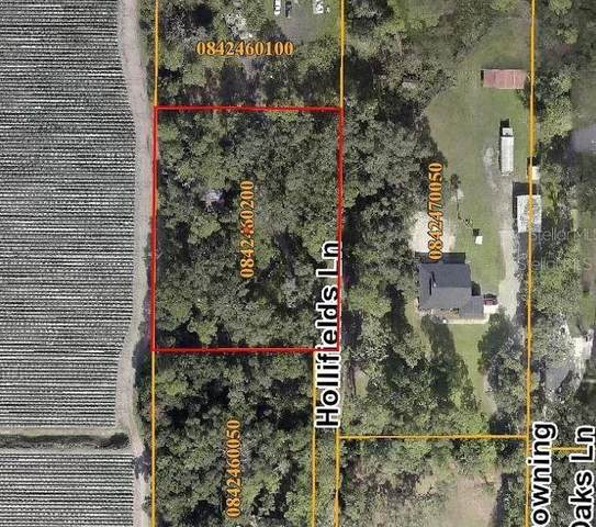 1817 Hollifields Lane, Dover, FL 33527 (MLS #A4500665) :: New Home Partners