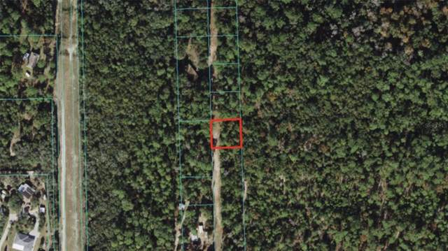 Unnassigned, Fort Mc Coy, FL 32134 (MLS #A4500706) :: The Kardosh Team