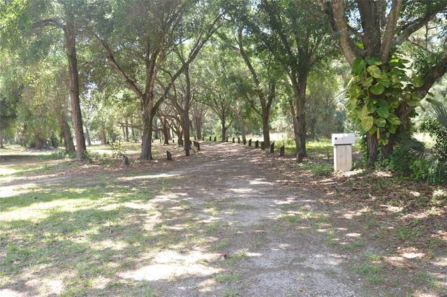 2905 Grafton Street, Sarasota, FL 34231 (MLS #A4500844) :: Keller Williams Realty Select