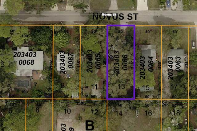Novus Street, Sarasota, FL 34237 (MLS #A4500858) :: Griffin Group