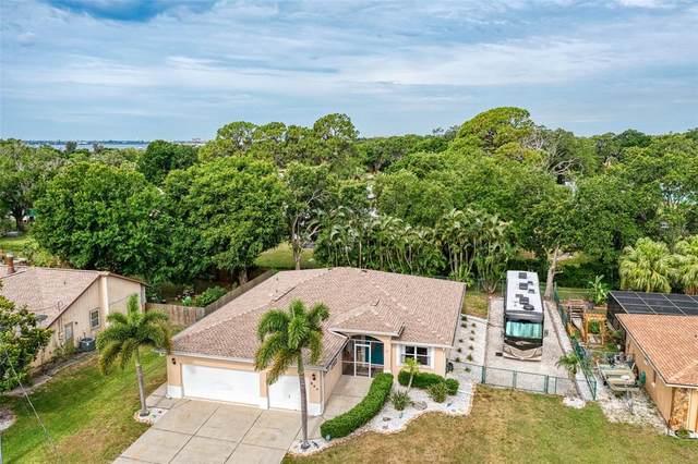 807 Ixora Avenue, Ellenton, FL 34222 (MLS #A4500861) :: Realty Executives in The Villages