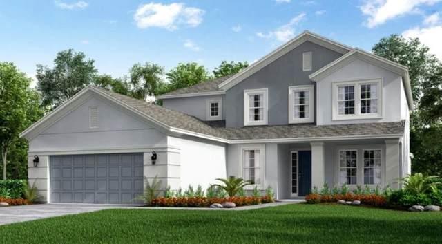3290 Current Avenue, Winter Garden, FL 34787 (MLS #A4500960) :: Positive Edge Real Estate