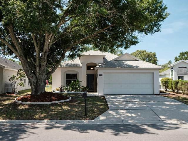 1360 Fawnwood Circle, Sarasota, FL 34232 (MLS #A4500967) :: Team Borham at Keller Williams Realty