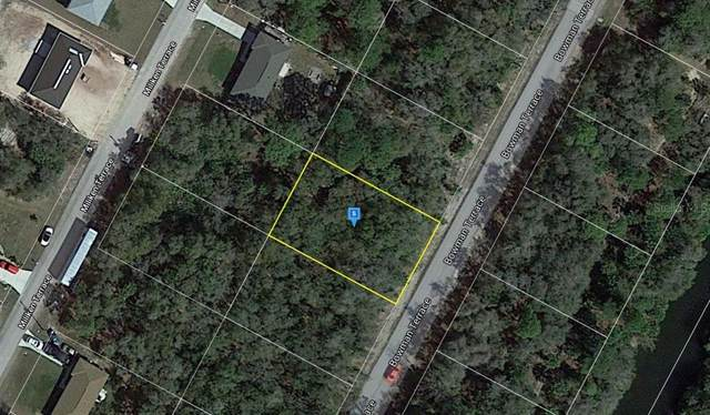 1035 Bowman Terrace, Port Charlotte, FL 33953 (MLS #A4500991) :: Realty Executives in The Villages