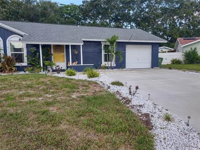 3406 53RD Street W, Bradenton, FL 34209 (MLS #A4501008) :: Team Borham at Keller Williams Realty