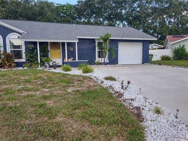 3406 53RD Street W, Bradenton, FL 34209 (MLS #A4501008) :: Armel Real Estate