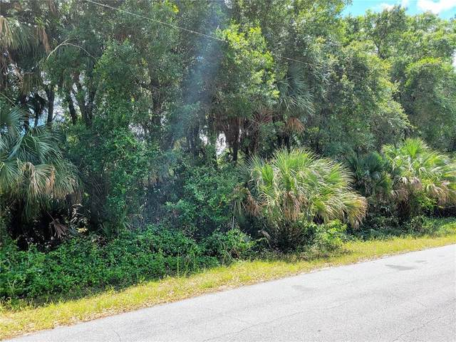 Dufferin Avenue, North Port, FL 34286 (MLS #A4501091) :: Gate Arty & the Group - Keller Williams Realty Smart