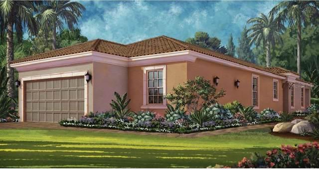 10406 Ingelnook Terrace, Palmetto, FL 34221 (MLS #A4501130) :: Team Pepka