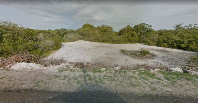 2216 Miguel Bay Drive, TERRA CEIA ISLAND, FL 34250 (MLS #A4501152) :: Team Pepka