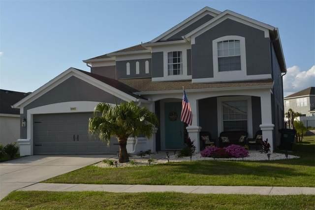 30403 Arrochar Street, Wesley Chapel, FL 33545 (MLS #A4501169) :: Team Bohannon