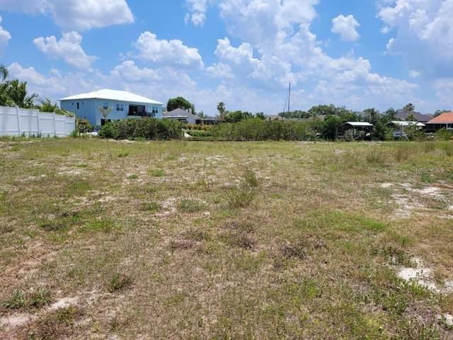 6646 Dolphin Cove Drive, Apollo Beach, FL 33572 (MLS #A4501441) :: Alpha Equity Team