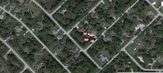 California Terrace, North Port, FL 34291 (MLS #A4501745) :: The Price Group