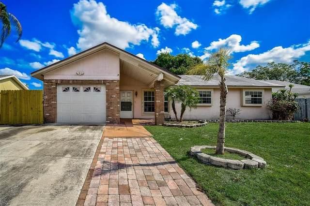 3887 Bellwood Drive, Sarasota, FL 34232 (MLS #A4501748) :: Frankenstein Home Team