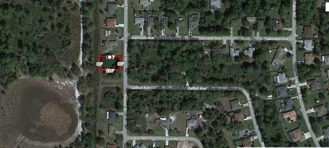 Alwood Street, North Port, FL 34291 (MLS #A4501749) :: Vacasa Real Estate