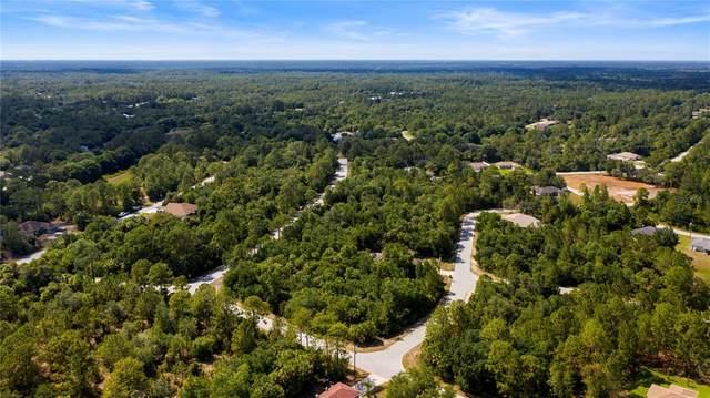 Montcalm Avenue, North Port, FL 34291 (MLS #A4501933) :: Coldwell Banker Vanguard Realty