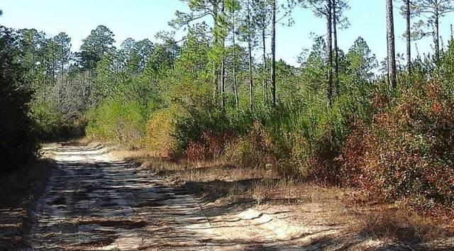 17603 Forest Drive, Fountain, FL 32438 (MLS #A4502141) :: Zarghami Group