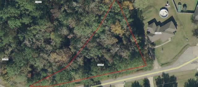55086 White Oak Place, CALLAHAN, FL 32011 (MLS #A4502397) :: Armel Real Estate