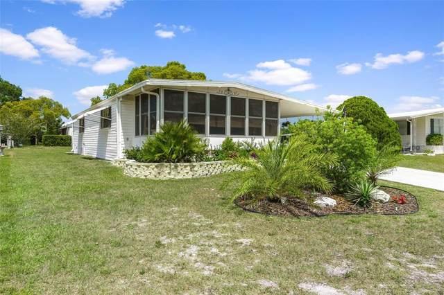 7429 Morelli Avenue, Brooksville, FL 34613 (MLS #A4502406) :: Prestige Home Realty