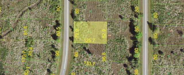 242 Albion Street, Port Charlotte, FL 33953 (MLS #A4502421) :: The Robertson Real Estate Group