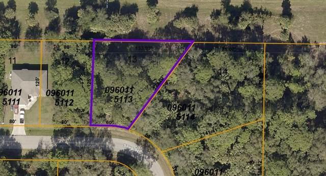 0960115113 Snug Street, North Port, FL 34286 (MLS #A4502543) :: The Robertson Real Estate Group