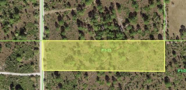 47220 Bermont Road, Punta Gorda, FL 33982 (MLS #A4502573) :: Medway Realty